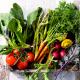 Χορτοφαγία: ναι ή όχι;