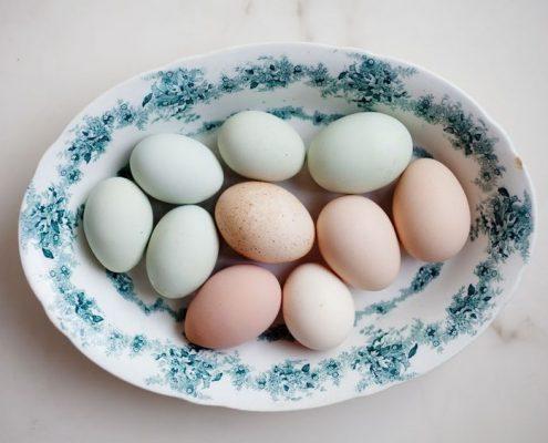 τελικά τα αυγά αυξάνουν την χοληστερίνη ;;;